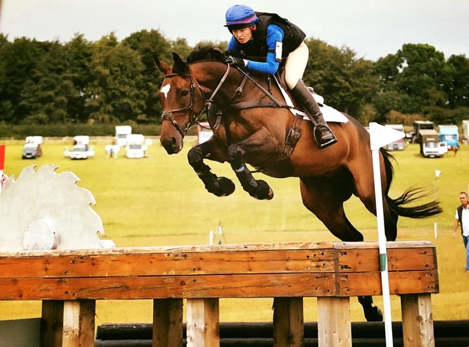 Ozzie Gem - Eventer For Sale