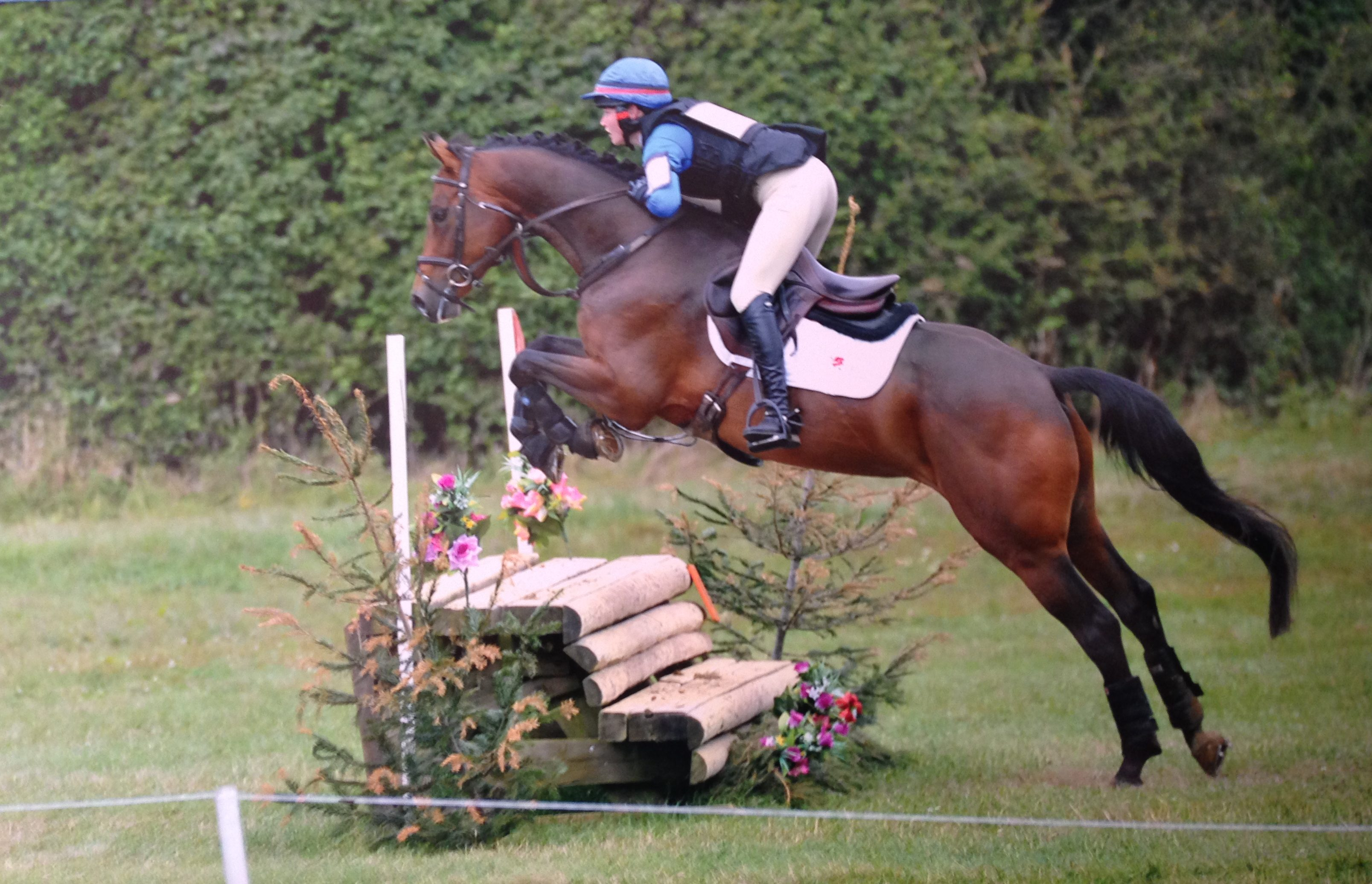 Merlough Bay - eventer for sale