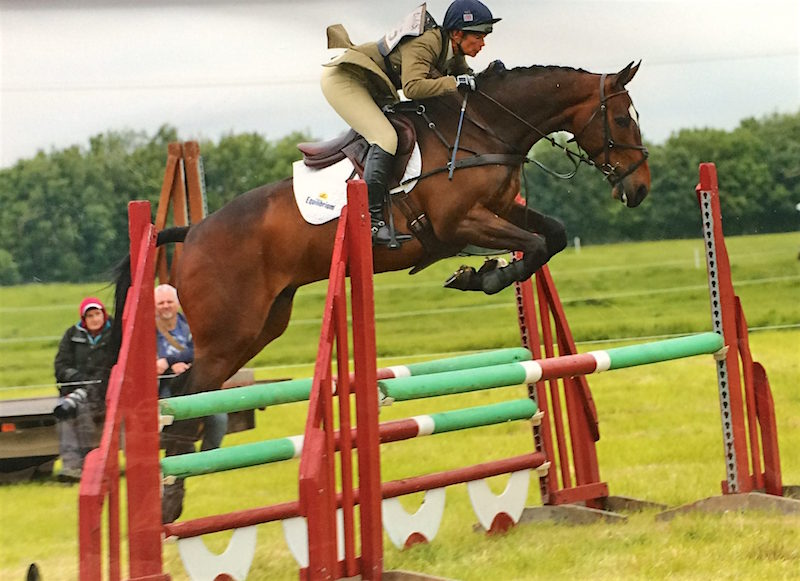 Eventer For Sale - Ozzies Gem